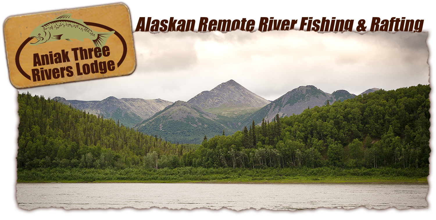 Alaskan Mountain Tours