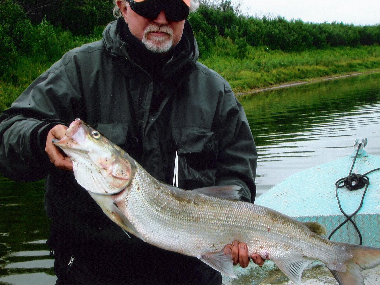 Remote River Fishing Alaska