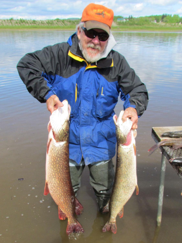 Northern Pike Fishing Alaska